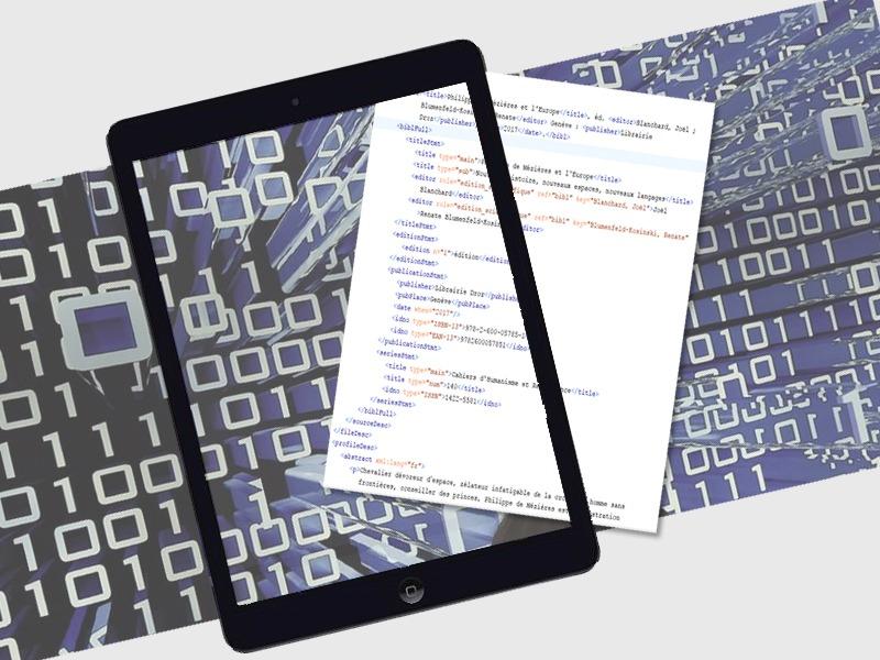 Flexedo, services et fabrication multisupport : :numérisation